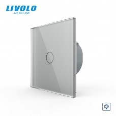 Выключатель сенсорный LIVOLO Touch Control Glass одноклав. сер